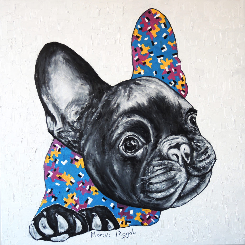 marcin-rogal-frenchie-french-bulldog